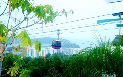Cable Car Above Jungle
