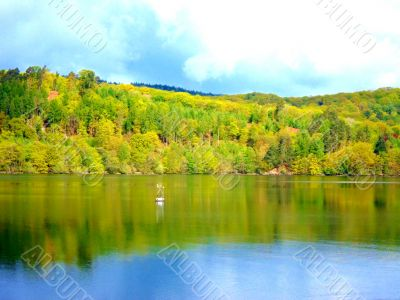 Lake With Forest Backdrop