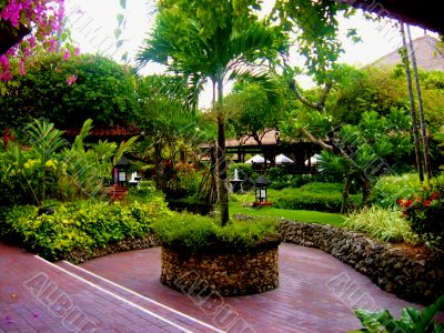 Peaceful Asian Garden with tree