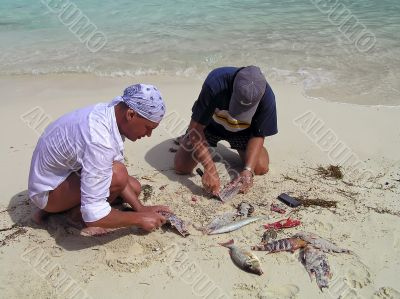 Men clean fish on the ocean.