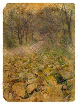 autumn landscape. Old postcard.