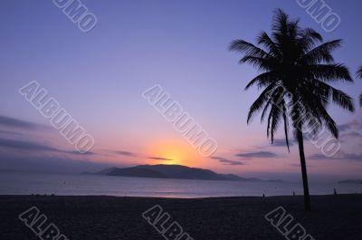 Landscape on beach
