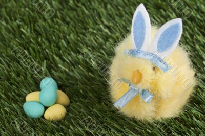 blue bunny staring at the easter eggs