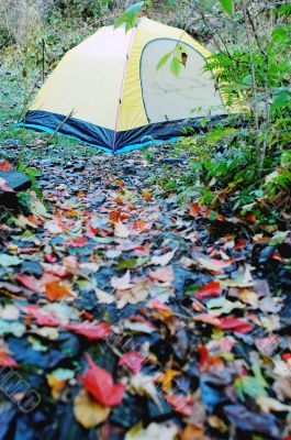 Camping in autumn