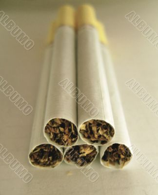 Five cigarettes on the white background