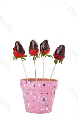 a pot with strawberry dip in chocolate