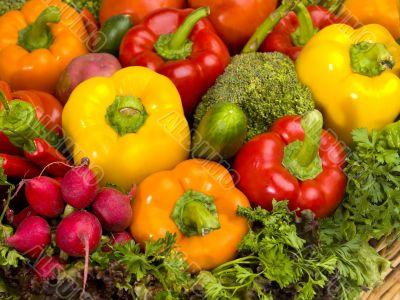 huge serving of vegetables