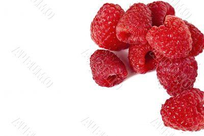group of raspberry fruit
