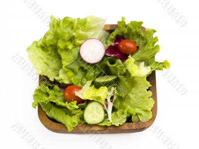 garden vegetable salad
