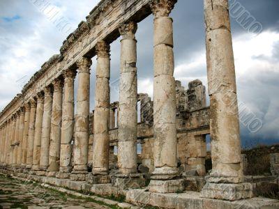 Columns of antique Apamea