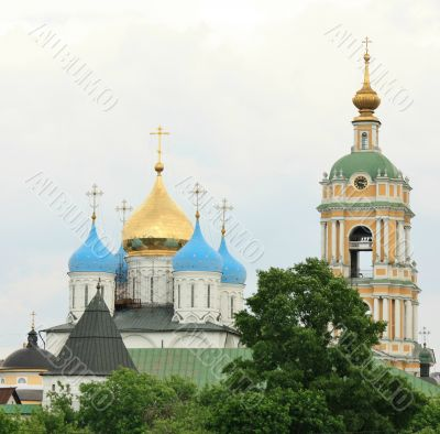 Domes of the Novospassky  Monastery  in Moscow