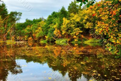 Scenic lake in autumn forest
