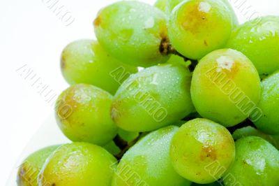 Closeup Bundle of Grapes