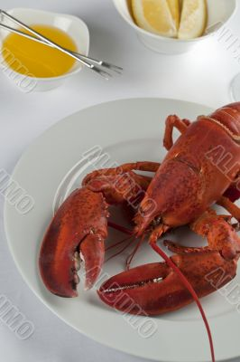 cropped image of plate with cooked lobster