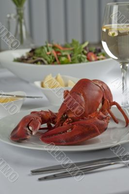 a plate with a lobster meal