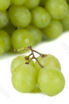 juicy green grape fruits