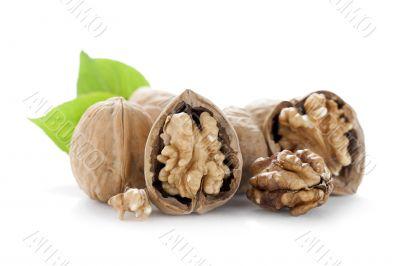 open walnuts