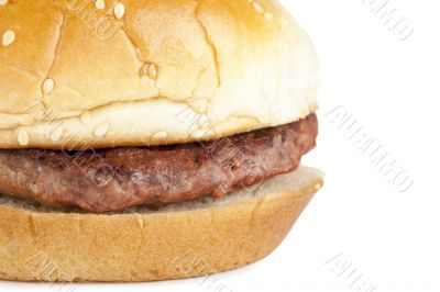macro image of hamburger