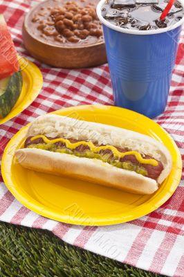 hotdog sandwich in picnic
