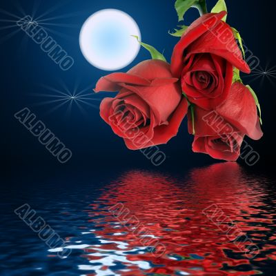 Bouquet from three red roses and moon.