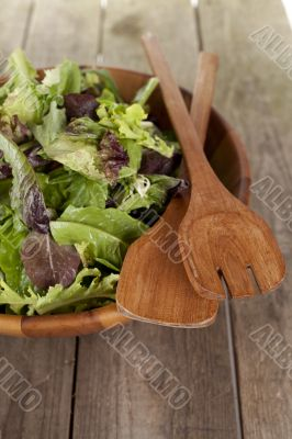 vegetable salad in wooden bowl