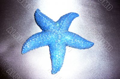 "Souvenir ""Starfish"" on a dark gray shiny background."