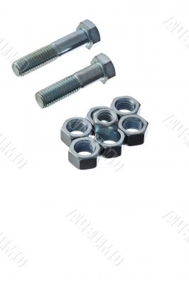screws and bolts arranged on white