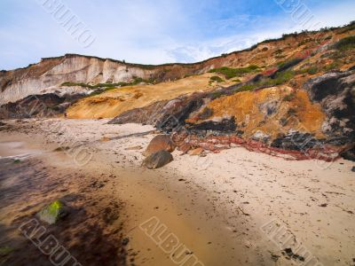 vibrant beaches