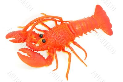 Toy of lobster