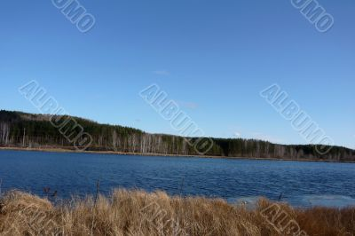 Cloudless sky, lake and forest.