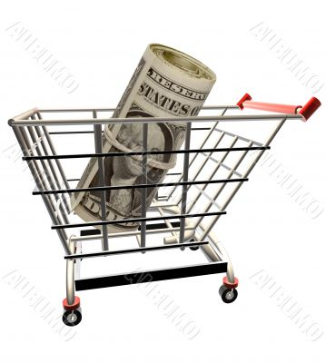 Money in the Shopping cart