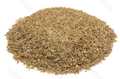 cumin seeds , asian spice,isolated on a white background.