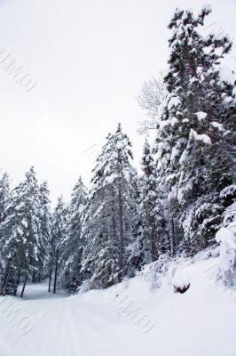 snow machine trail