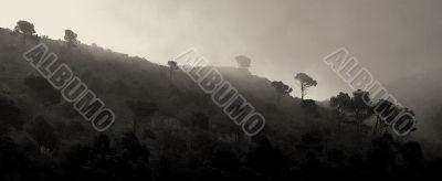 Greek Island Fog