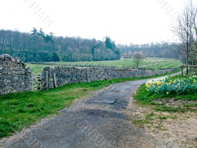 stone wall in countryside