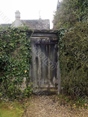 Wooden Gate with Vines