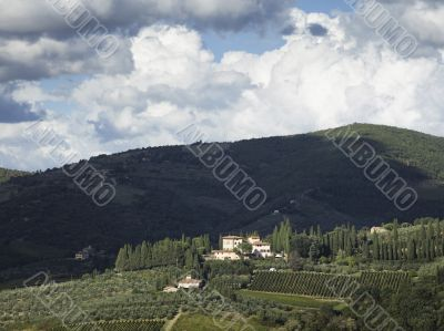 green hill in the field of tuscany