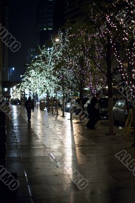 electric lights on trees in new york city at night