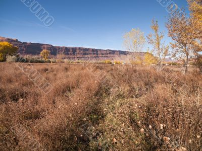 distance view of cliff in utah
