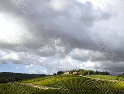 tuscan vineyard with dramatic clouds