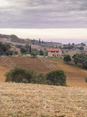 view of fields in tuscany