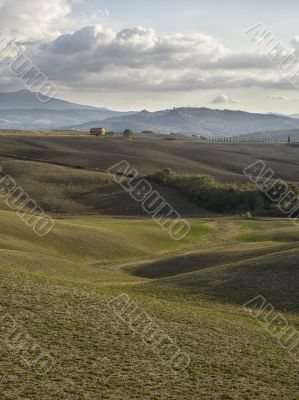 view of barn field in tuscany