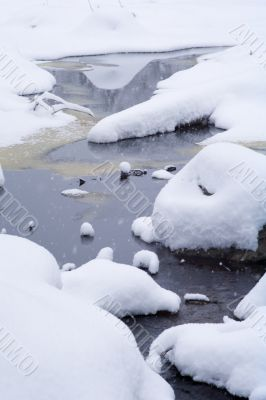 snow covered water