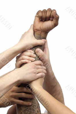 group of business people lifting their hand