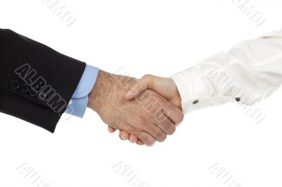 businessperson handshake
