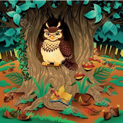 Scene with owl.