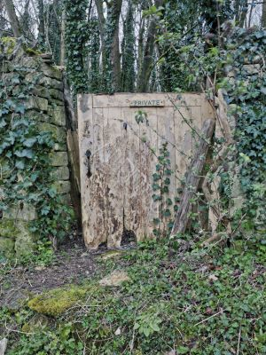 private gate in forest