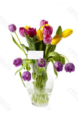 colorful tulips in vase with a card