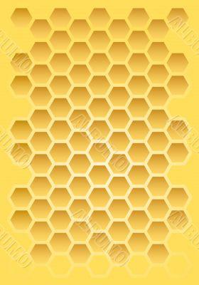 Bee honeycomb