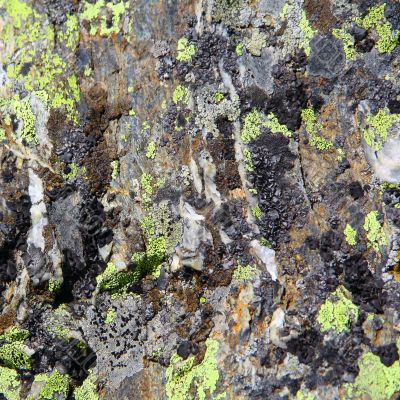 Image of colorful texture